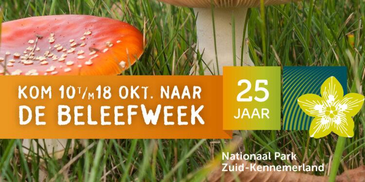 affiche van beleefweek nationaal park zuid kennemerland van 10 tot en met 18 oktober, logo van het nationaal park en paddenstoelen in het gras zichtbaar